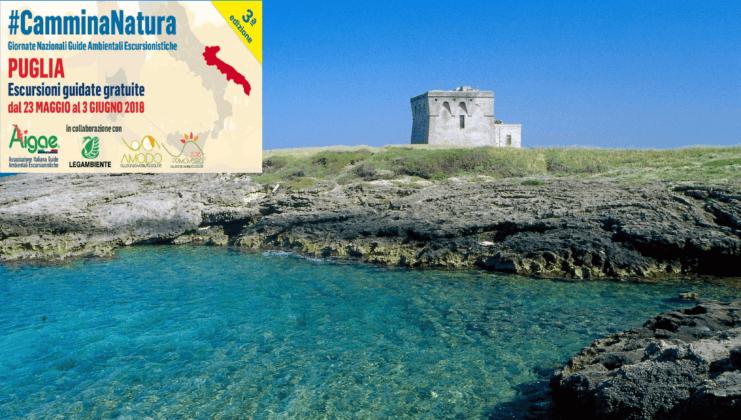 Per il ponte del 2 Giugno la Cooperativa Thalassia organizza tante attività alla scoperta della Natura e dei Segreti della Riserva Naturale di Torre Guaceto