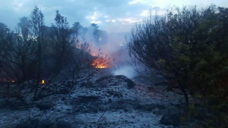 Carovigno. Di nuovo fiamme a Pantanagianni, bruciate macchia e zona umida
