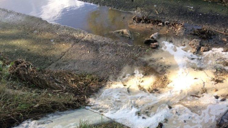 Liquami smaltiti nell'oasi di Torre Guaceto: denunciato imprenditore agricolo