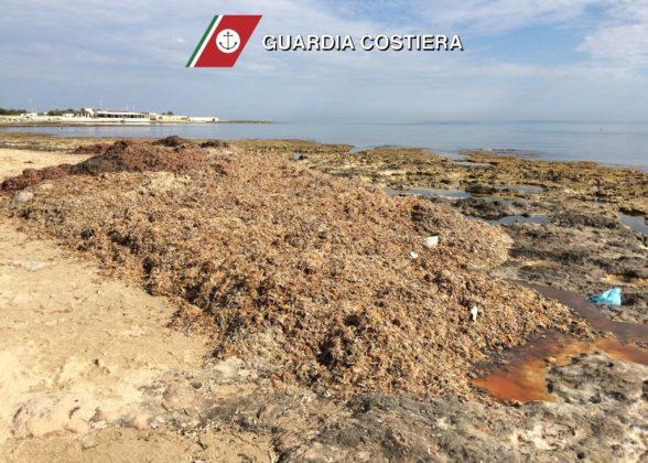 Guardia Costiera: sanzioni all'interno della Riserva Naturale e Specchiolla