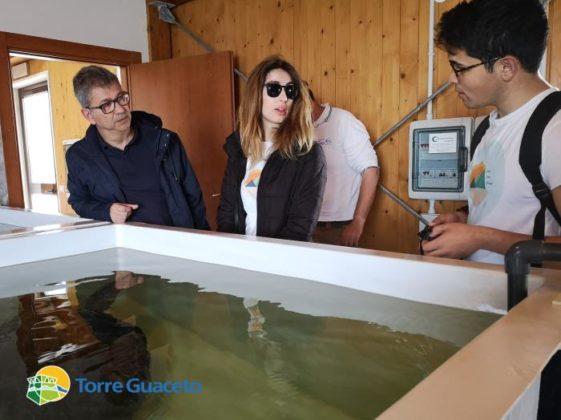 L'amore per le tartarughe non ha confini: dall'America a Torre Guaceto per sostenere il centro recupero