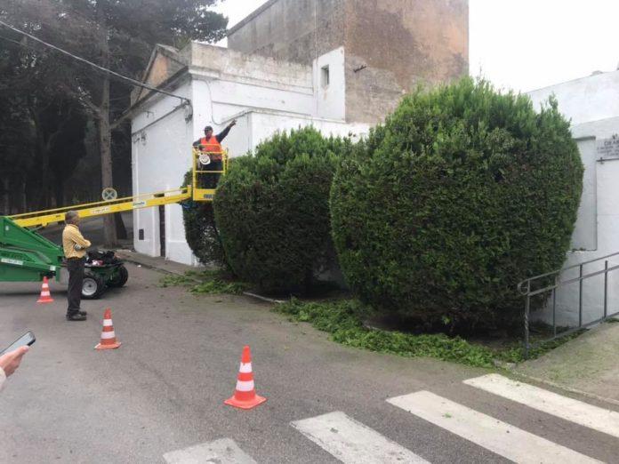 Lavori strardinari Cimitero Cittadino